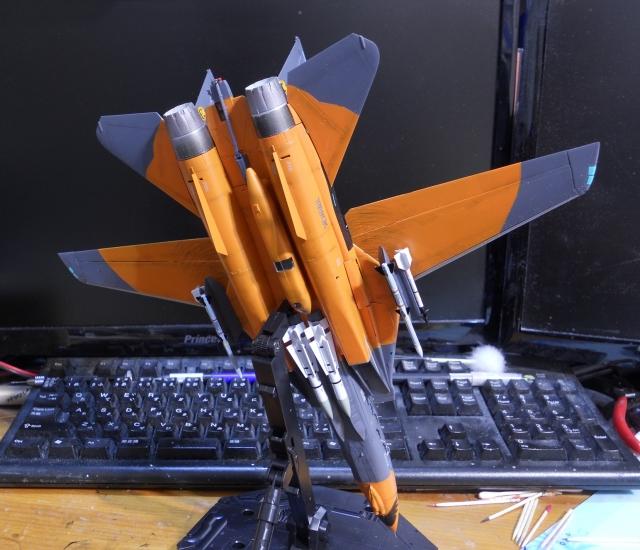 hasegawa_F-14D_pf_24.jpg