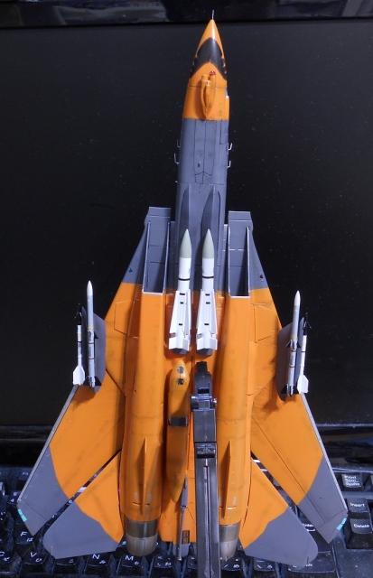 hasegawa_F-14D_pf_26.jpg