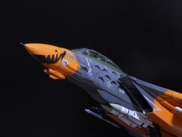 hasegawa_F-14D_pf_27.jpg