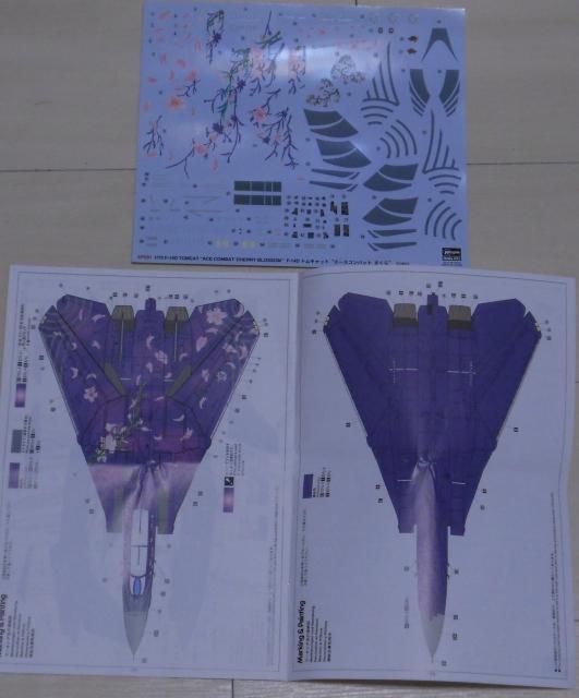 hasegawa_F-14D_skr_01.jpg