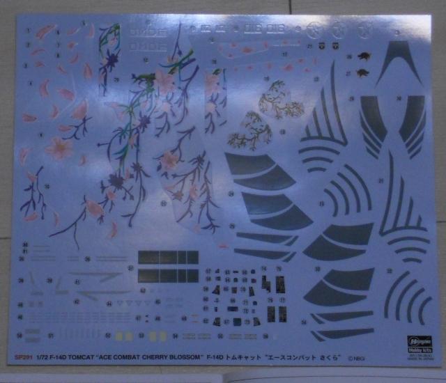 hasegawa_F-14D_skr_02.jpg