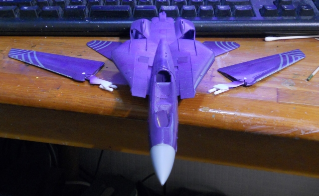 hasegawa_F-14D_skr_05.jpg