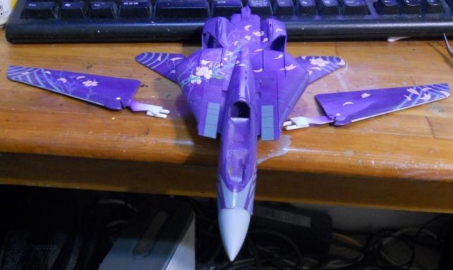 hasegawa_F-14D_skr_06.jpg