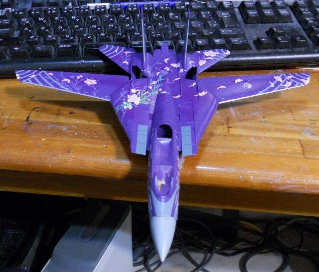 hasegawa_F-14D_skr_07.jpg