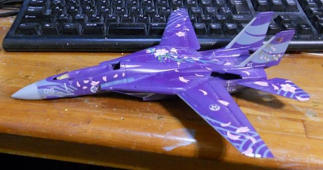 hasegawa_F-14D_skr_08.jpg