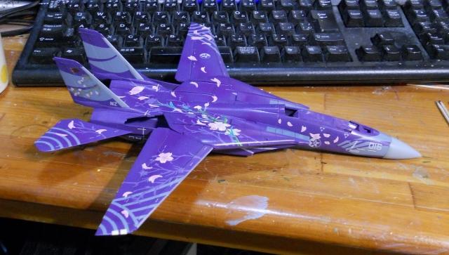 hasegawa_F-14D_skr_09.jpg