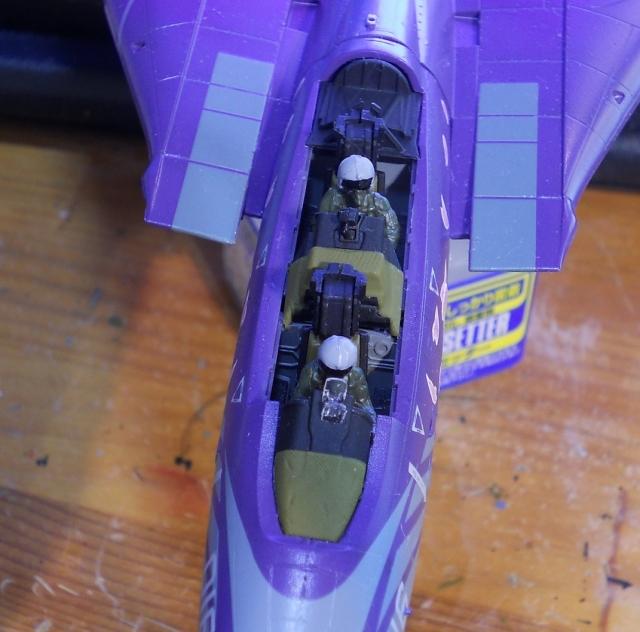 hasegawa_F-14D_skr_11.jpg