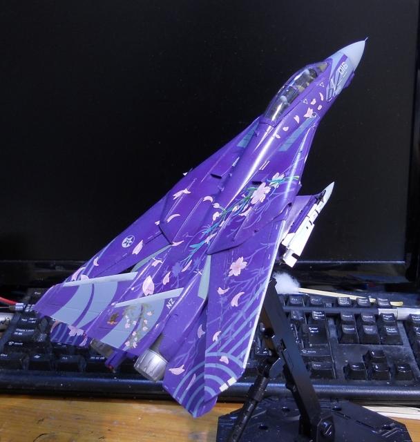 hasegawa_F-14D_skr_13.jpg