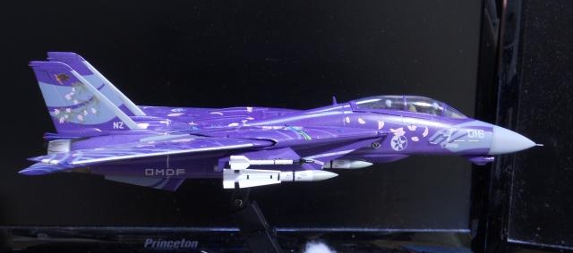 hasegawa_F-14D_skr_14.jpg