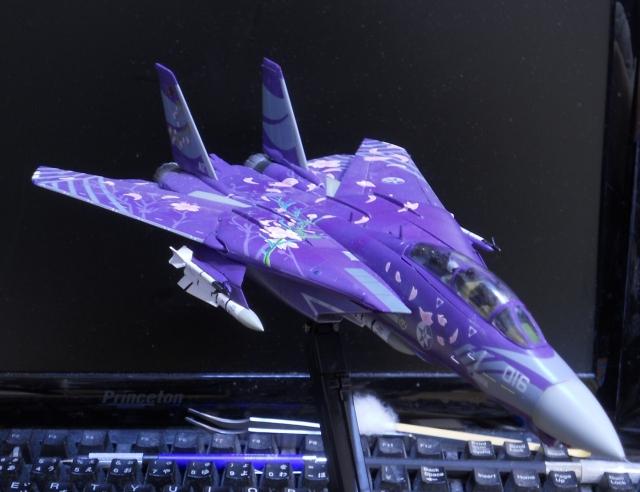 hasegawa_F-14D_skr_15.jpg