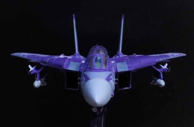 hasegawa_F-14D_skr_16.jpg