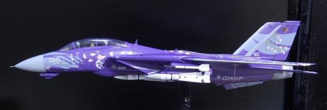 hasegawa_F-14D_skr_18.jpg