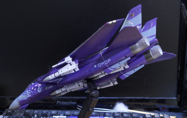hasegawa_F-14D_skr_19.jpg