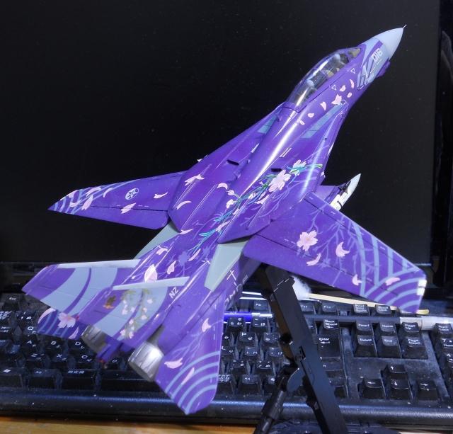 hasegawa_F-14D_skr_21.jpg