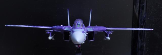 hasegawa_F-14D_skr_23.jpg