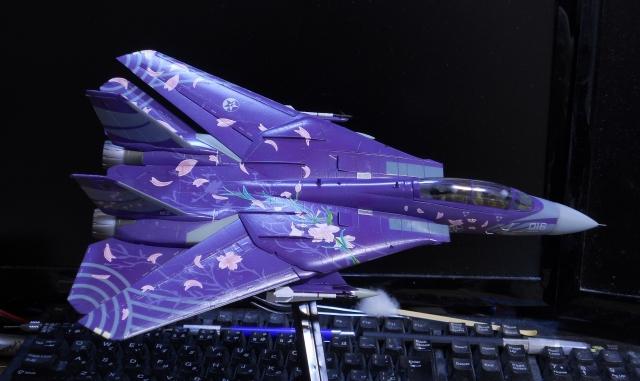 hasegawa_F-14D_skr_28.jpg