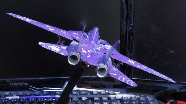 hasegawa_F-14D_skr_30.jpg
