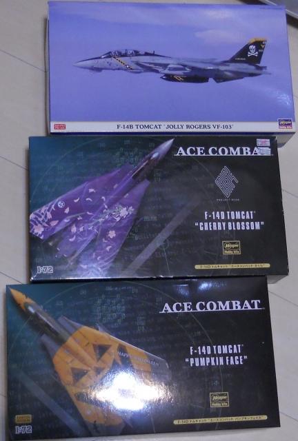 hasegawa_F-14s_01.jpg