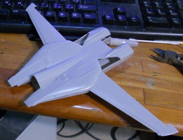 hasegawa_F-14s_05.jpg