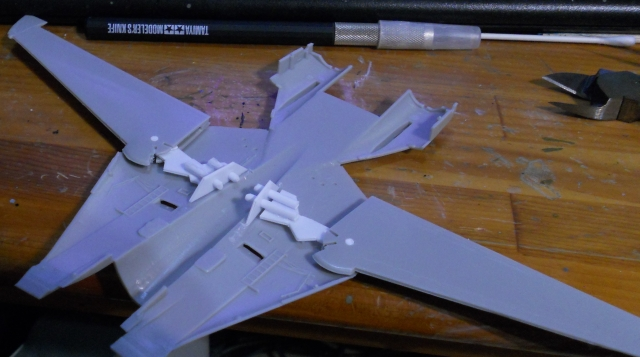 hasegawa_F-14s_06.jpg
