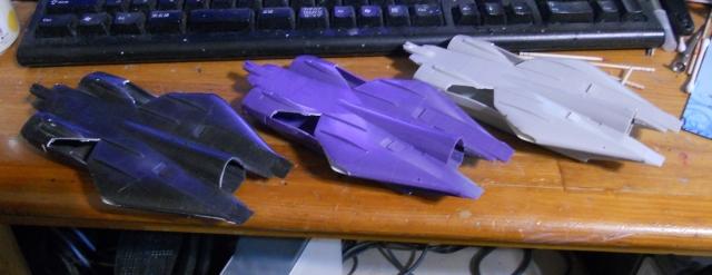 hasegawa_F-14s_11.jpg