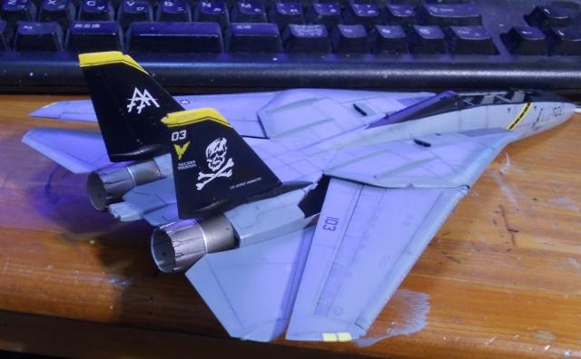 hasegawa_F-14s_17.jpg