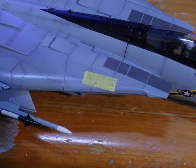 hasegawa_F-14s_25.jpg