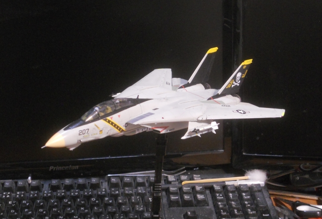 tomcat_f14a_03.jpg