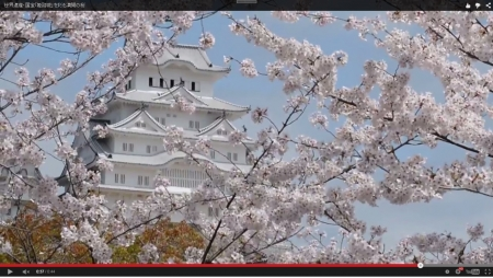 Himejijo_Sankei_2015-4-4-03.jpg