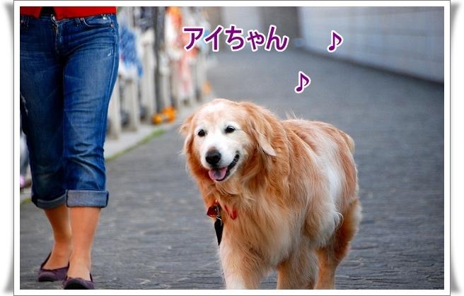 DSC_0023_20110506212246[1]