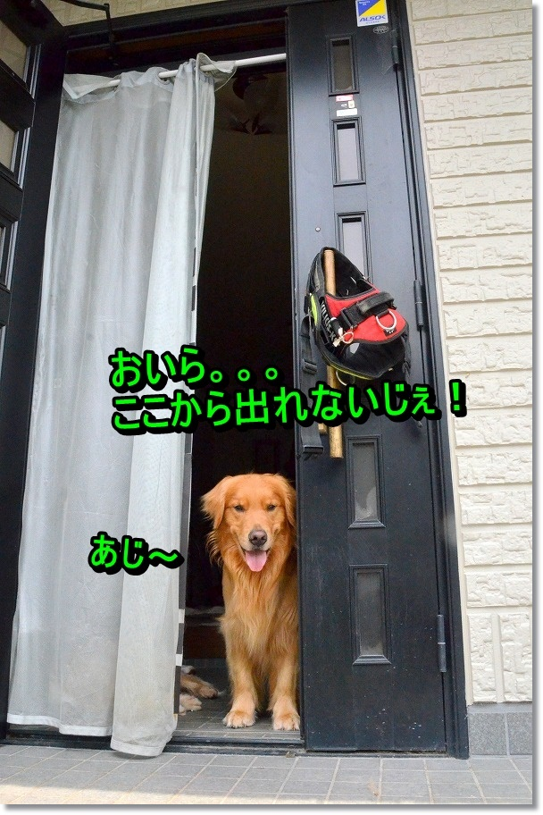 DSC_9112.jpg