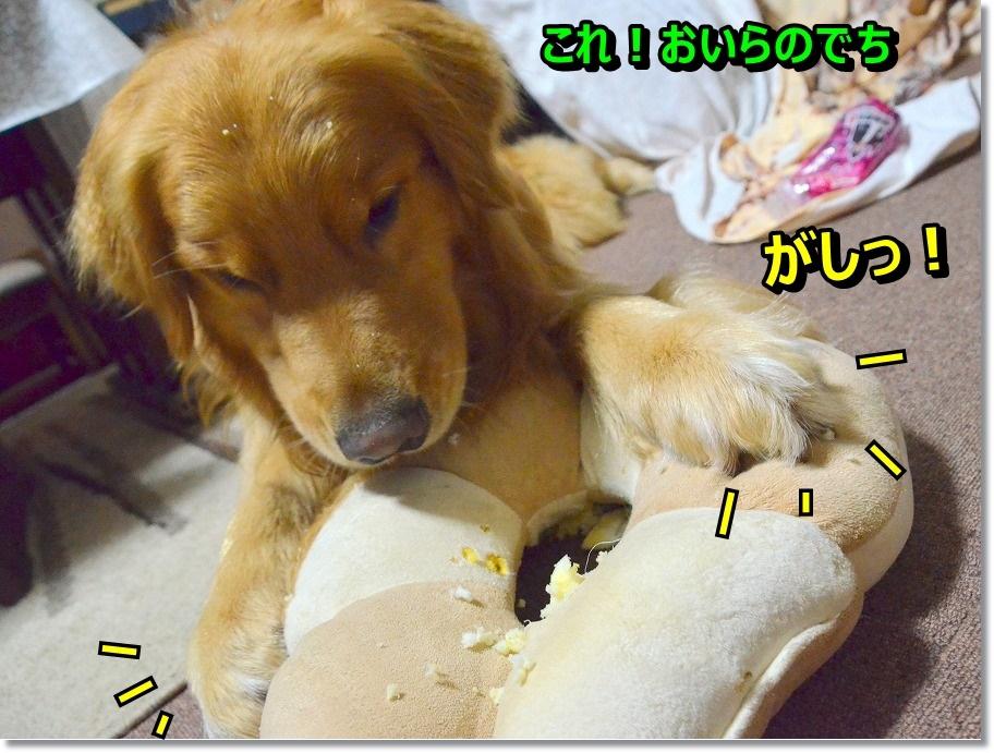 DSC_9307_20150624001936ac0.jpg