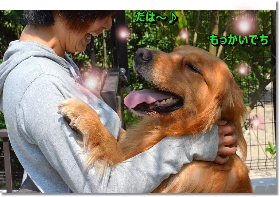 DSC_9403.jpg