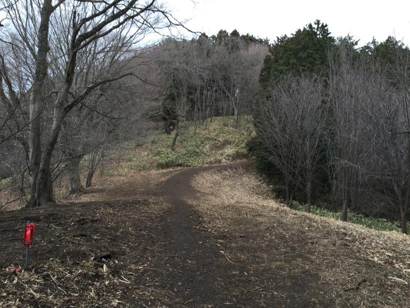 doudokoroyama04.jpg