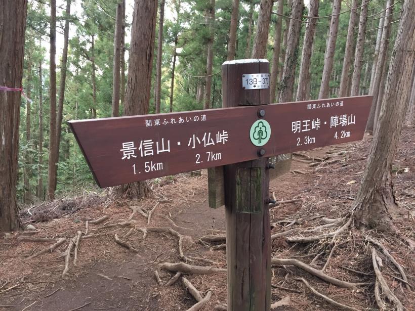doudokoroyama15.jpg