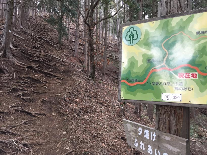 doudokoroyama28.jpg