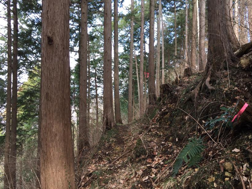 houzukikikan05.jpg