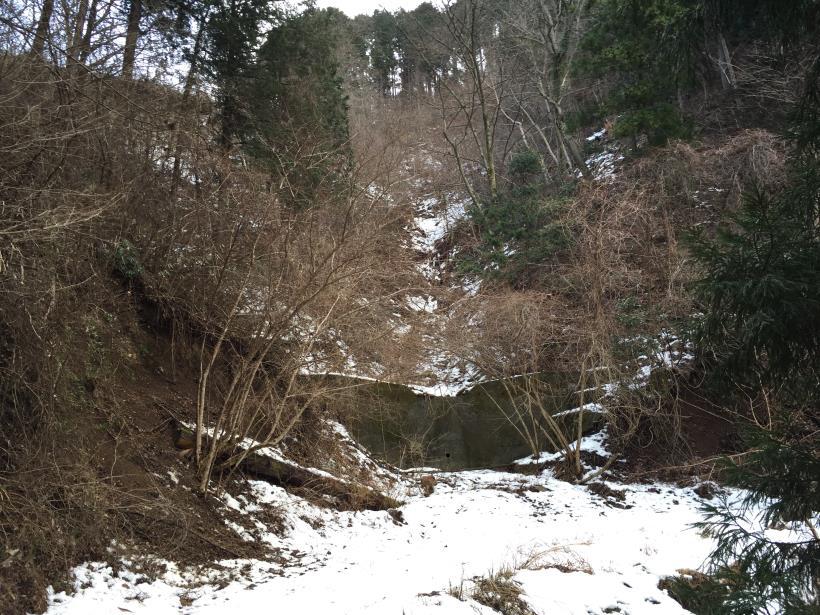 houzukisisen36.jpg