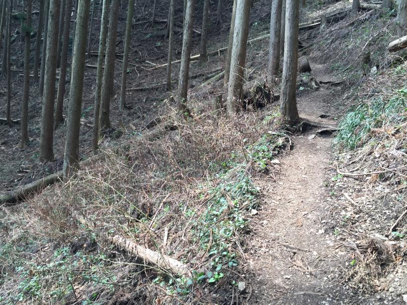 kagenobuyama11.jpg