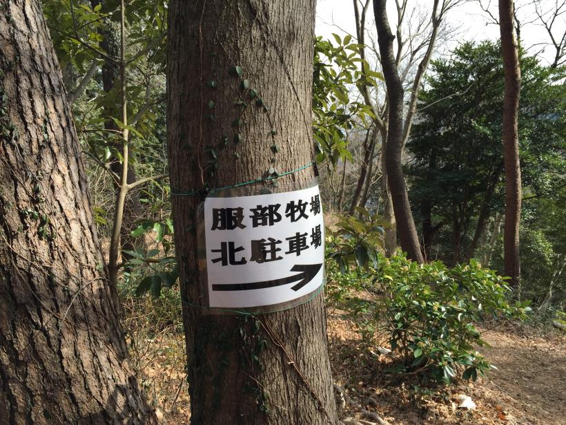 minamiyamakikan12.jpg