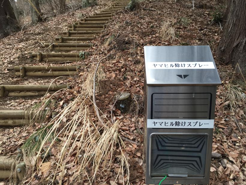 miyagaseminamiyama15.jpg