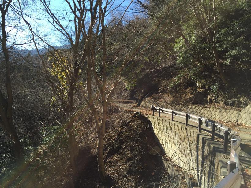 okunohosou36.jpg