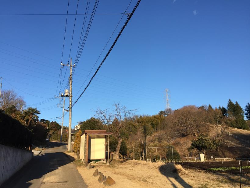 oyamadaryokutiZ01.jpg