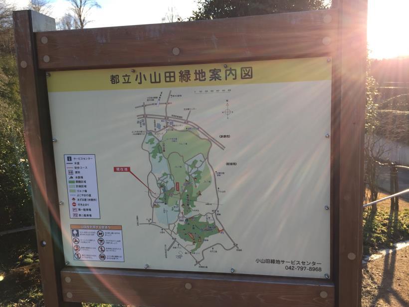 oyamadaryokutiZ02.jpg
