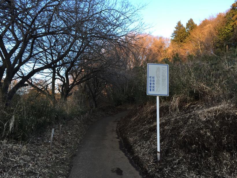 oyamadaryokutiZ26.jpg