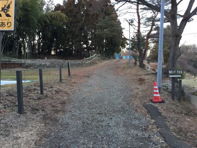oyamadaryokutiZ48.jpg