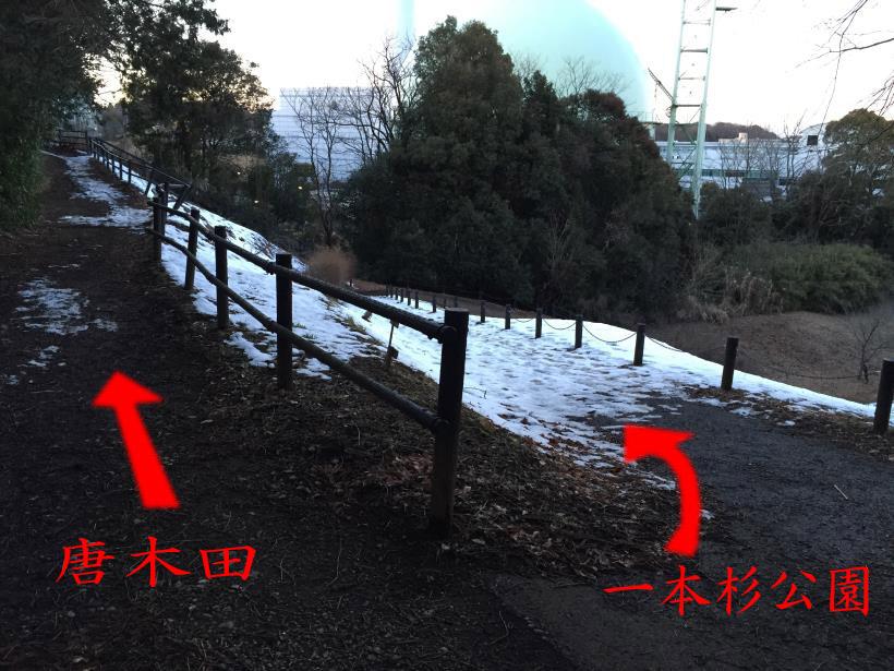 oyamadaryokutiZ54B.jpg