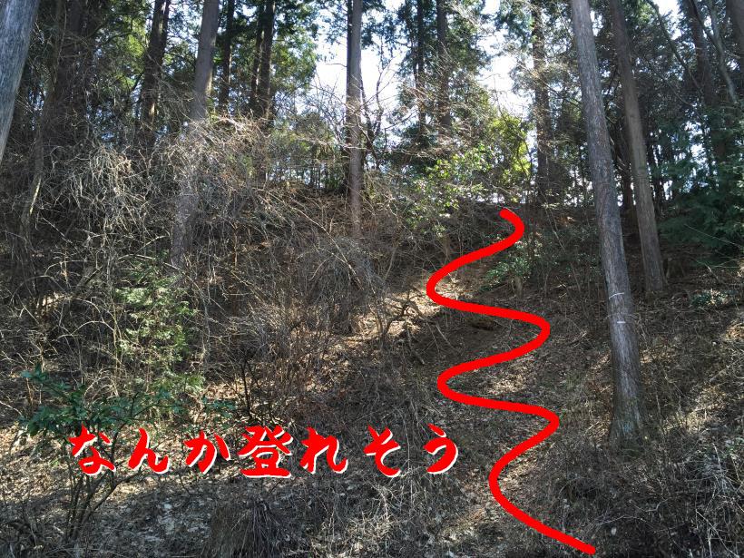 takatukayama61C.jpg