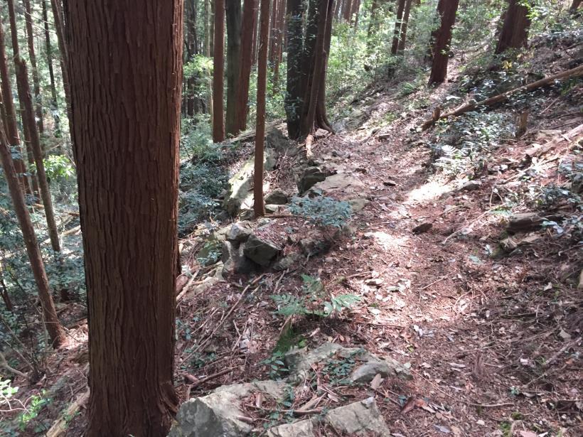 takimakura101.jpg