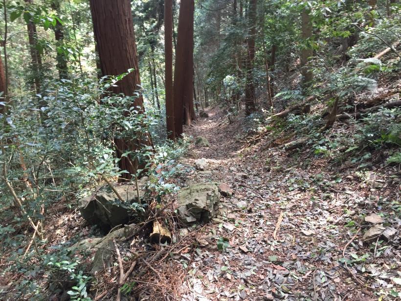 takimakura103.jpg